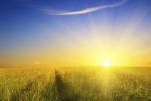 Septembre le plus chaud de tous les temps : Météoà15Jours.com déplace le début de l'hiver au 22 Février