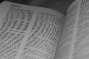 Nouveaux mots du dictionnaire 2016 : Le Petit Robert et Le Petit Larousse dévoilent leurs nouveautés