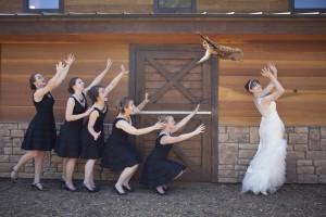 Galerie photo : la nouvelle mode du lancer de chat dans les mariages
