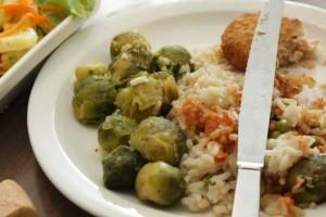 Gaspillage alimentaire dans les cantines scolaires : des plats de substitution s'ils n'aiment pas le repas
