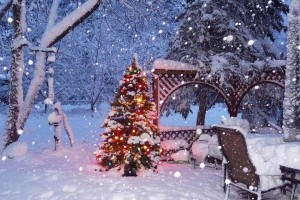 Les publicités pour Noël interdites suite à une demande de l'Observatoire de la Laïcité