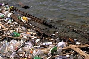 Pour la nettoyer, la Seine sera asséchée en 2017