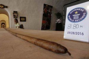 Record du monde : le plus long pénis humain du monde fait… 81,80 m