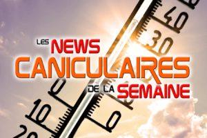Les news insolites caniculaires de la semaine du 19 au 25 juin 2017