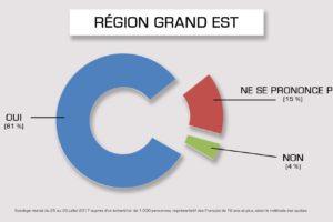 Contrairement à l'Île-de-France, la région Grand Est serait largement favorable (selon un dernier sondage)